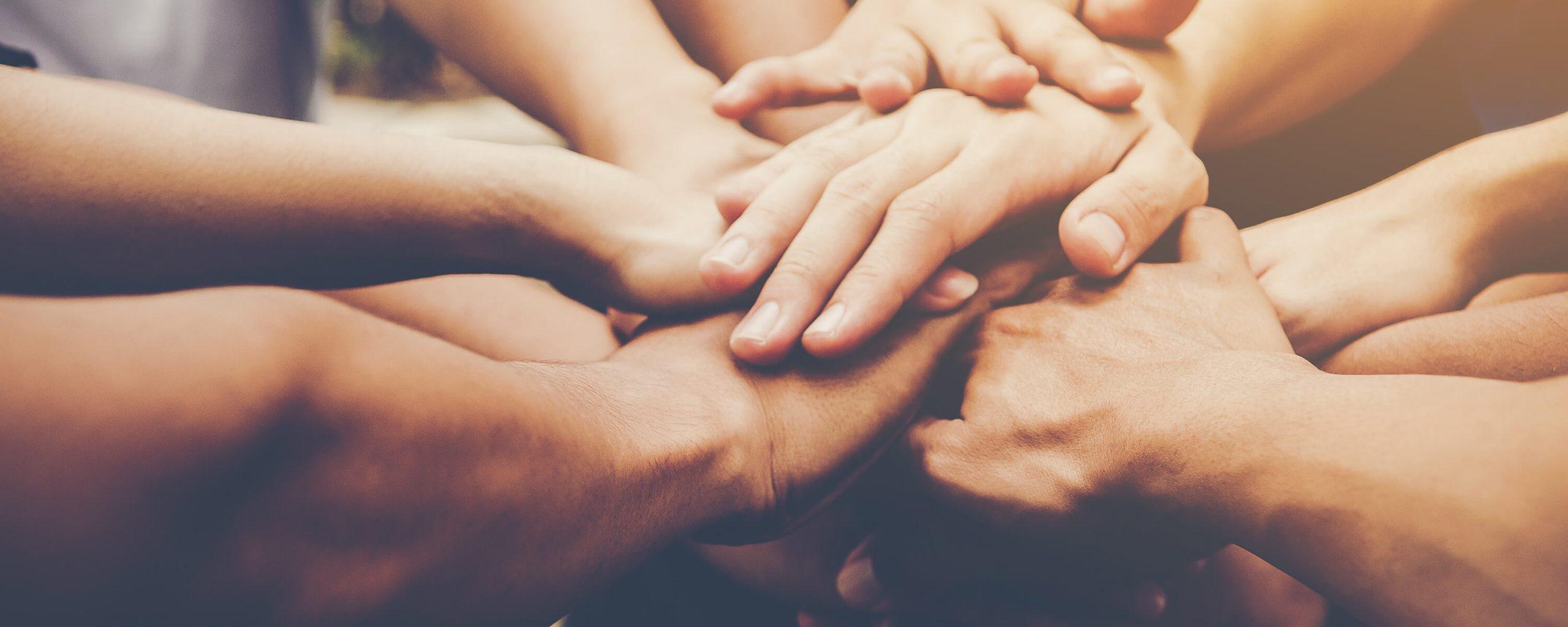 Servicios Socio-económicos de Grupo Innovaris