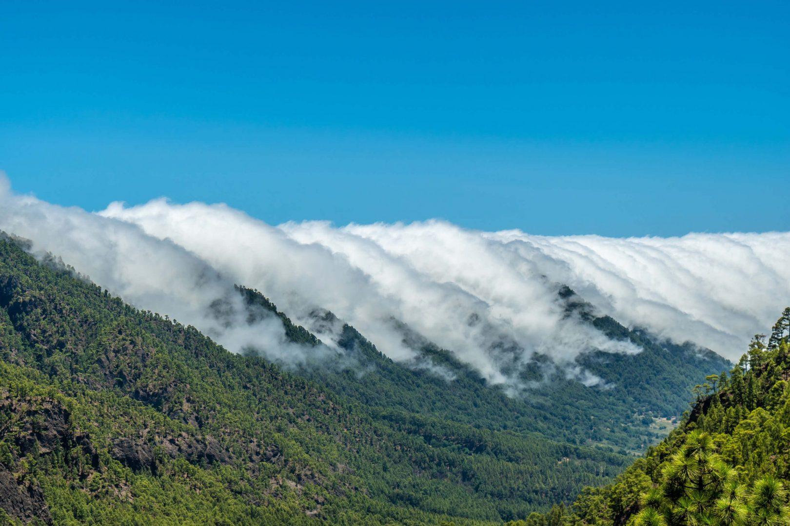 Grupo Innovaris Plan de Sostenibilidad Turística de la Reserva de la biosfera de La Palma